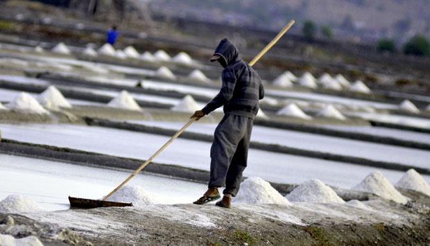 Potensi Bisnis Garam Dapur yang Untung Terus